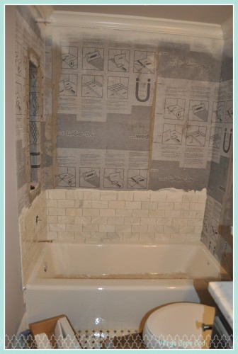 Downstairs Bathroom - Tub Tile (1)